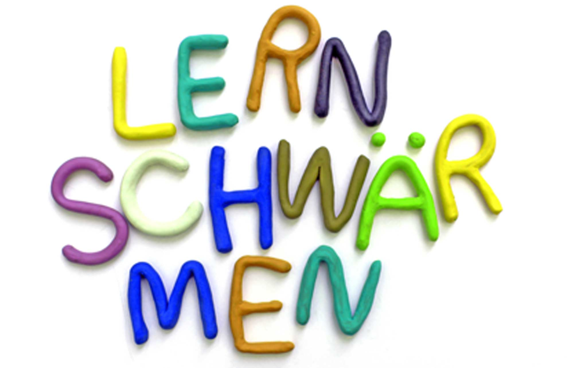 Lernschwaermen_Logo_72dpi